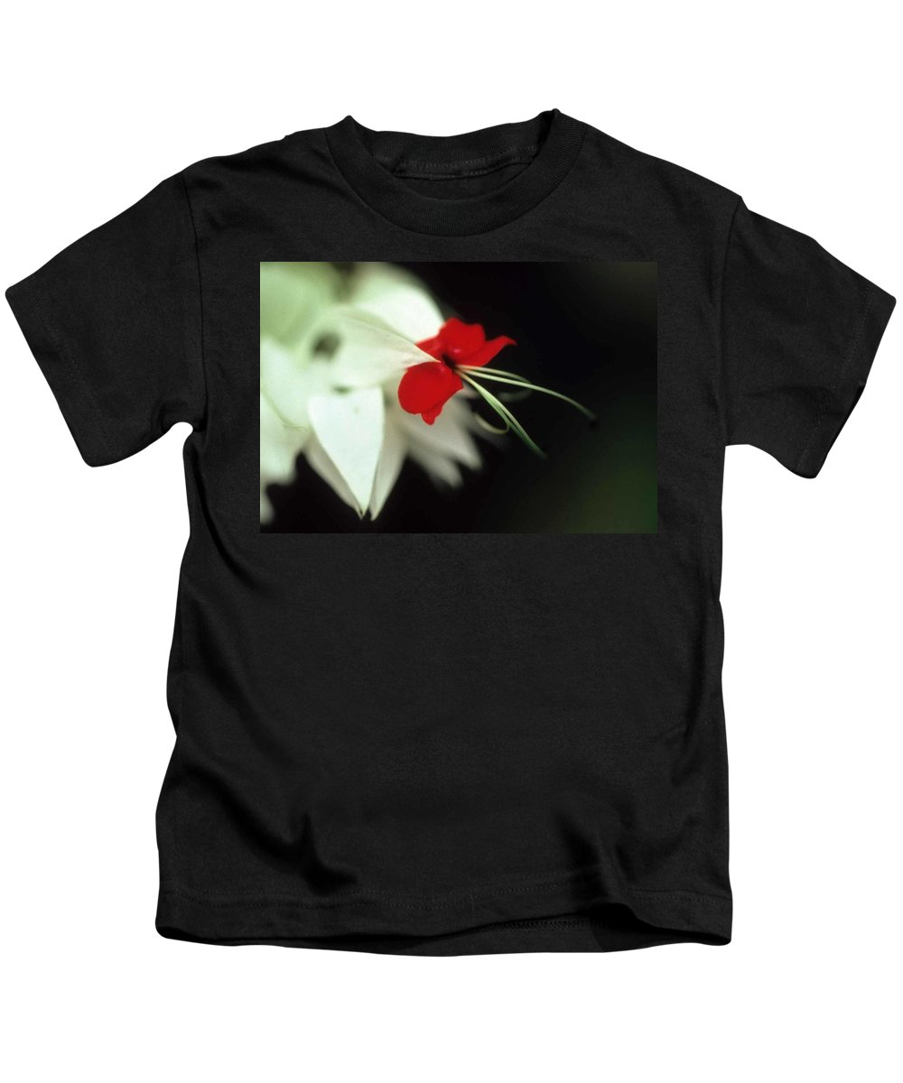 Crown Of Thorns Kids T-Shirt featuring the photograph Crown Of Thorns by Laurie Paci