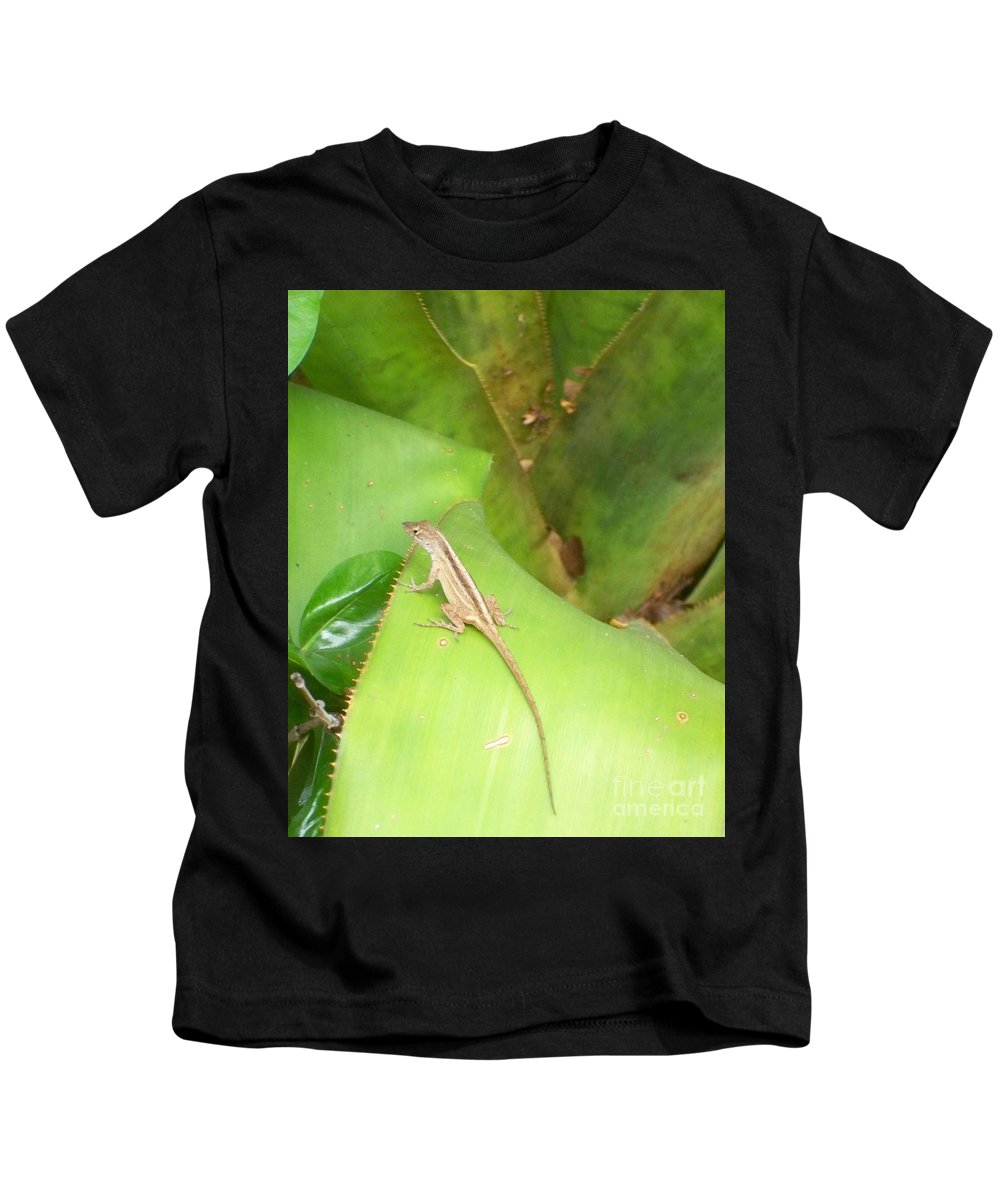 Florida Kids T-Shirt featuring the photograph Curious Lizard I by Chris Andruskiewicz
