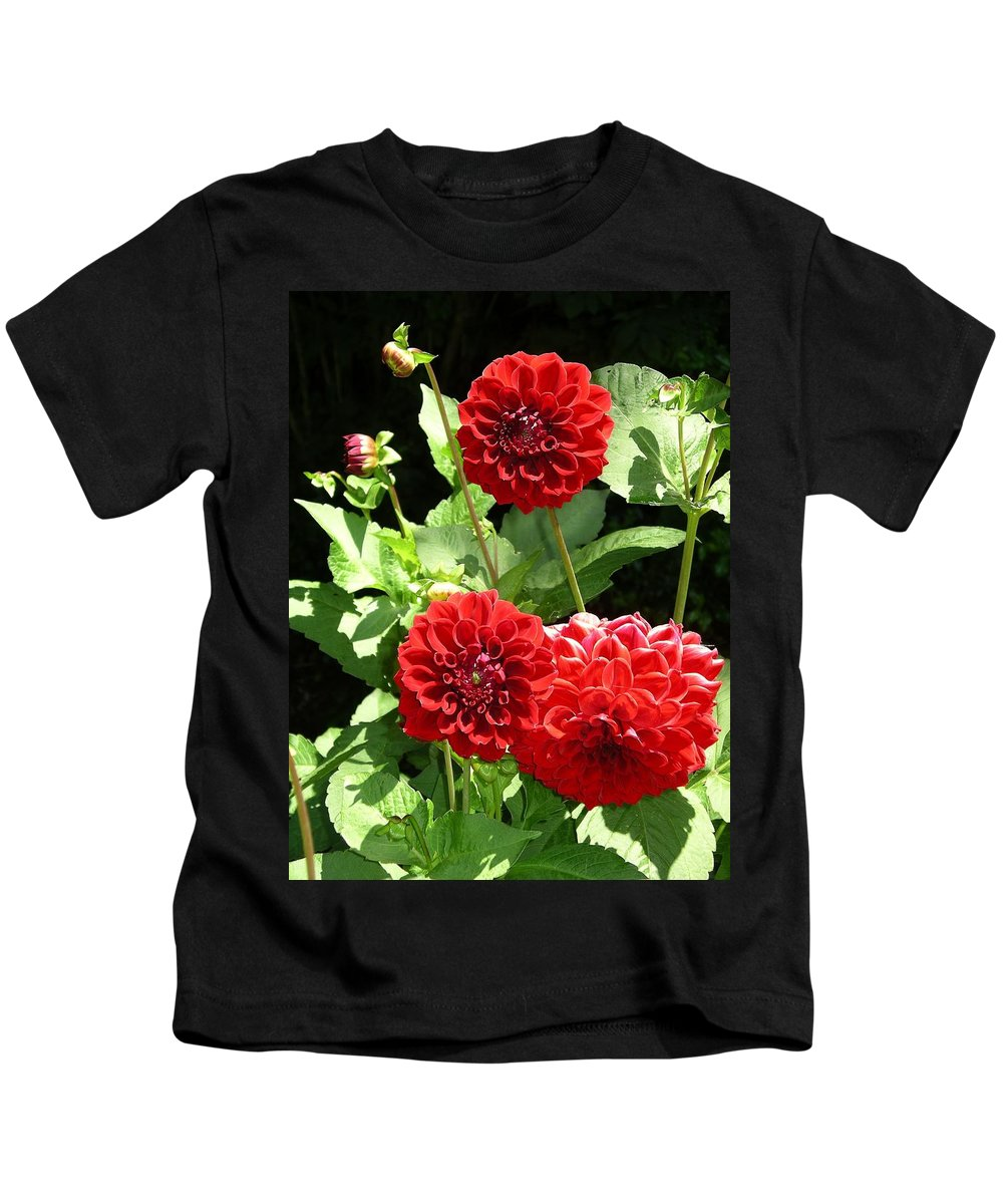 Flower Kids T-Shirt featuring the photograph Dahlia 1 by Rich Bodane