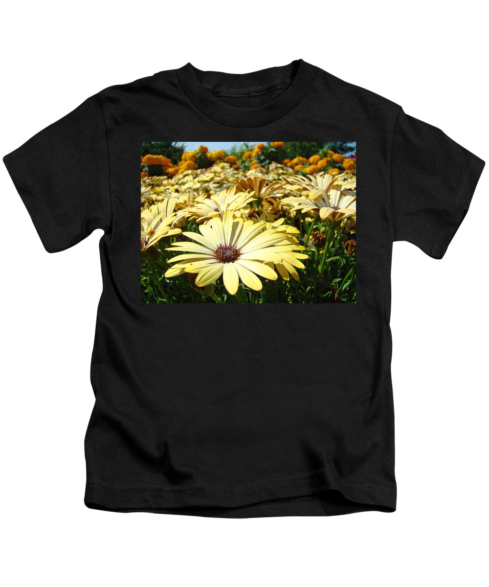 Daisy Kids T-Shirt featuring the photograph Daisies Yellow Daisy Flowers Garden Art Prints Baslee Troutman by Baslee Troutman