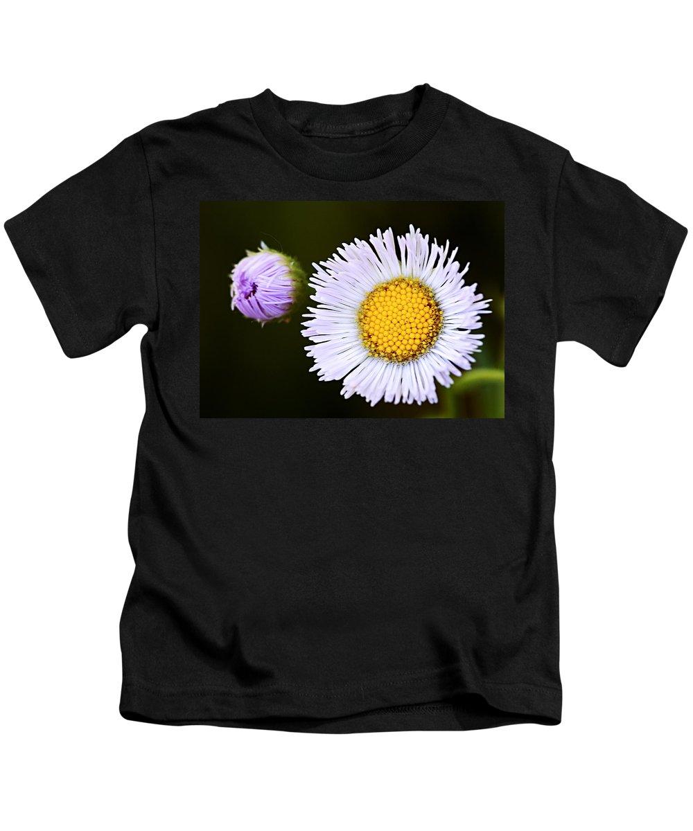 Fleabane Kids T-Shirt featuring the photograph Daisy Fleabane 3 by Larry Ricker