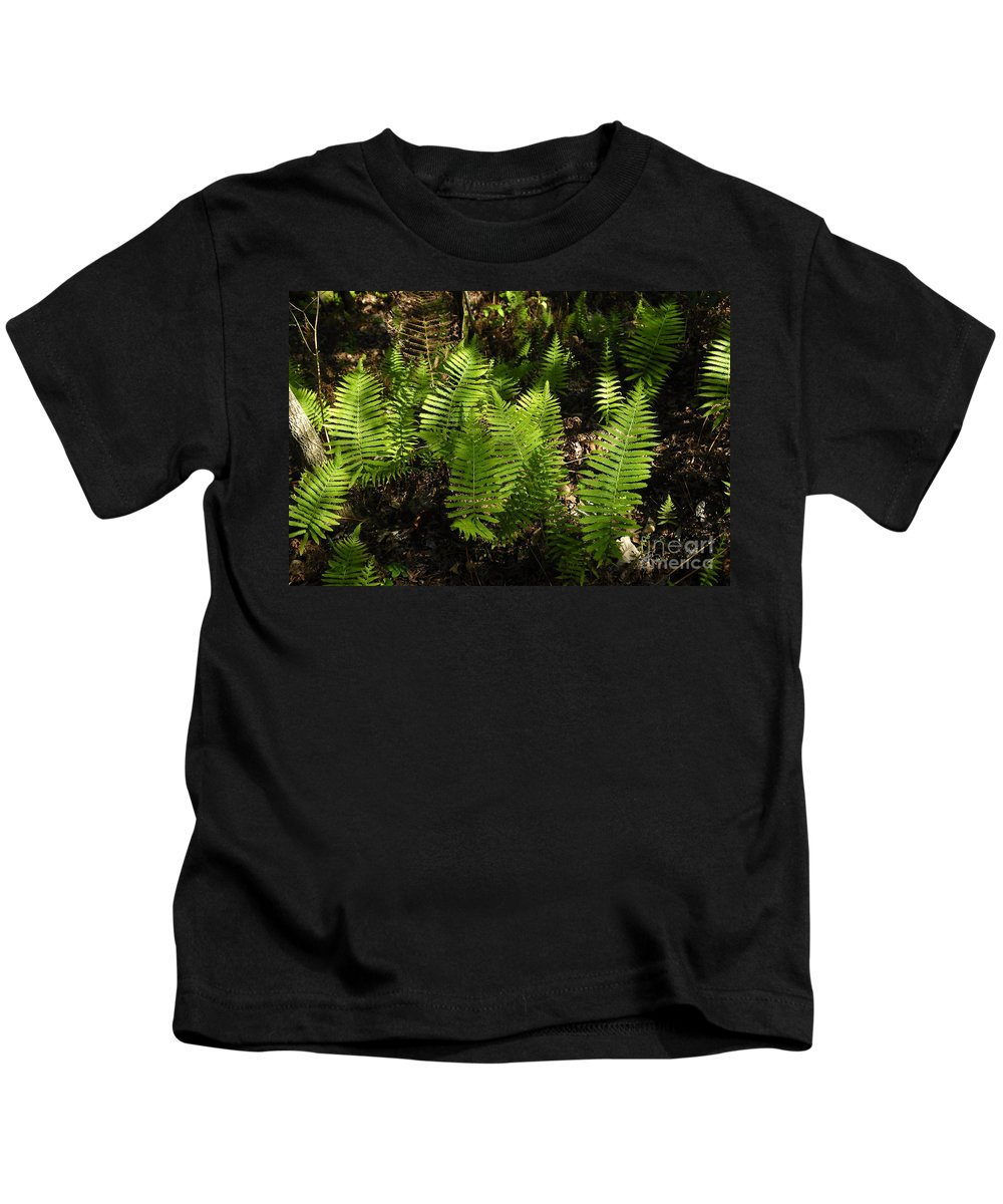 Ferns Kids T-Shirt featuring the photograph Dancing Ferns by David Lee Thompson