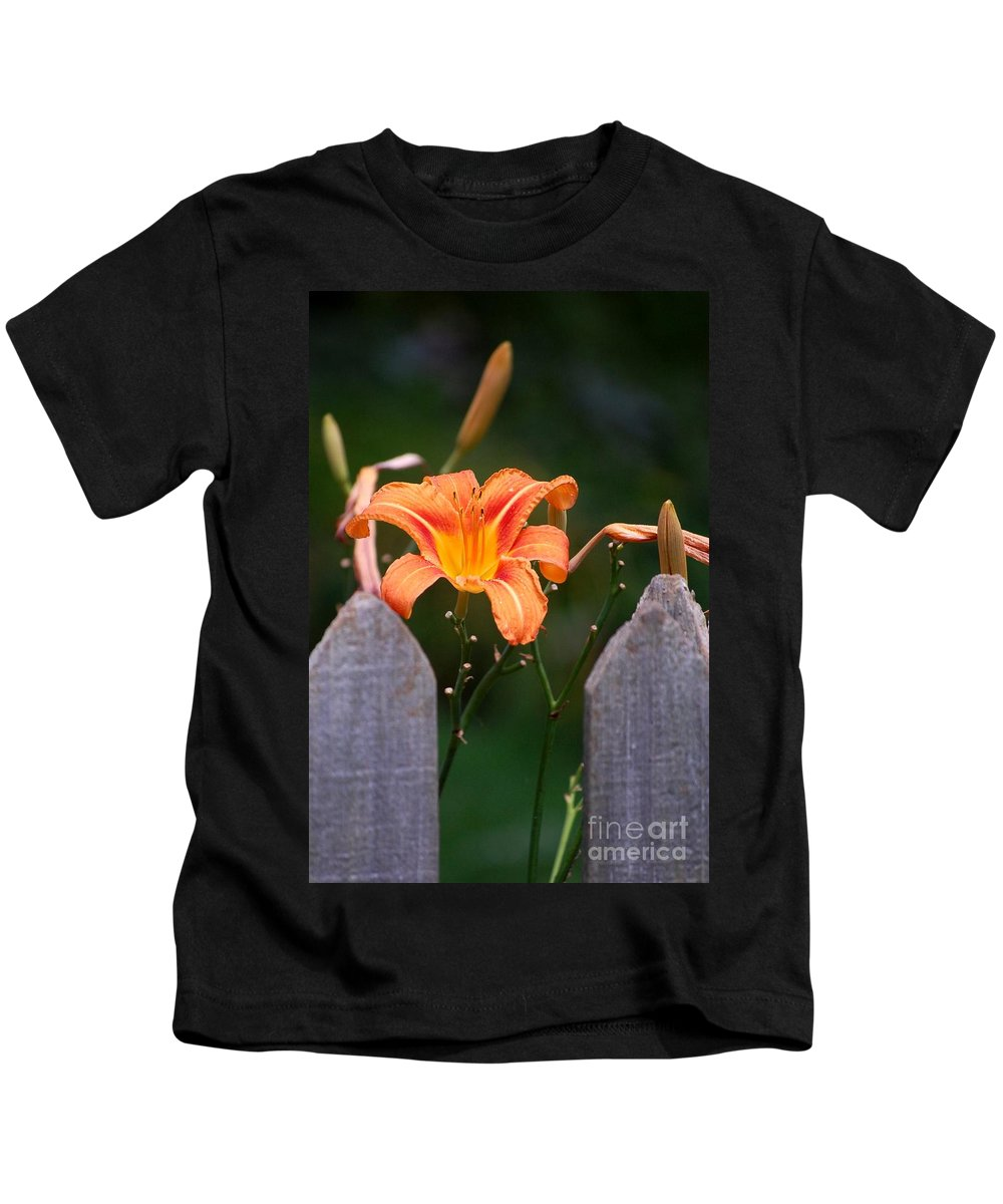Digital Photograph Kids T-Shirt featuring the photograph Day Lilly Fenced In by David Lane