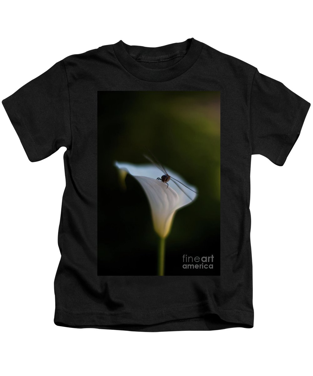 Dragonfly Kids T-Shirt featuring the photograph Delicate Dance by Mike Reid
