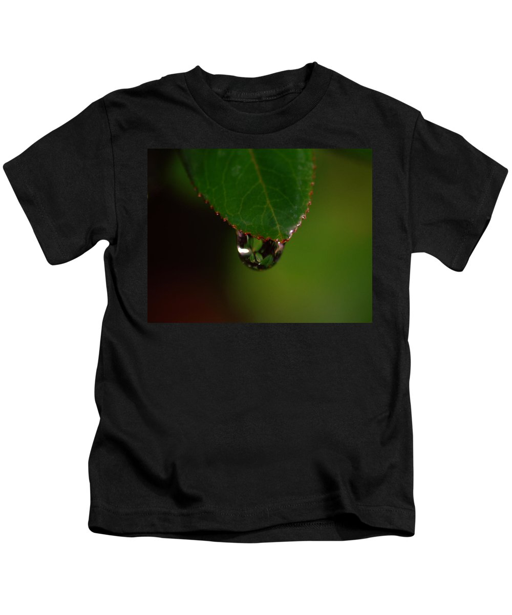 Plant Kids T-Shirt featuring the photograph Dew Drop In by Donna Blackhall