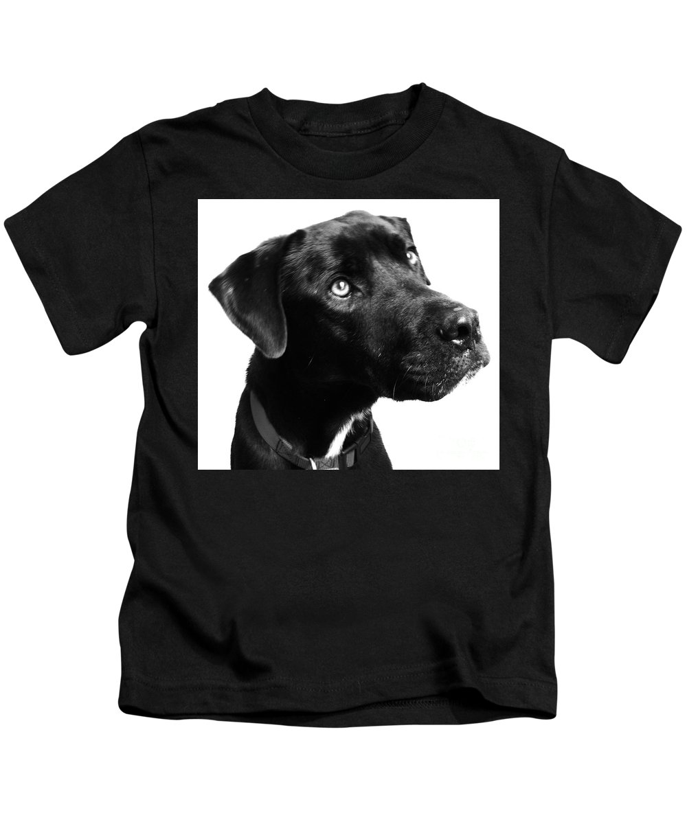 Dogs Kids T-Shirt featuring the photograph Dog by Amanda Barcon