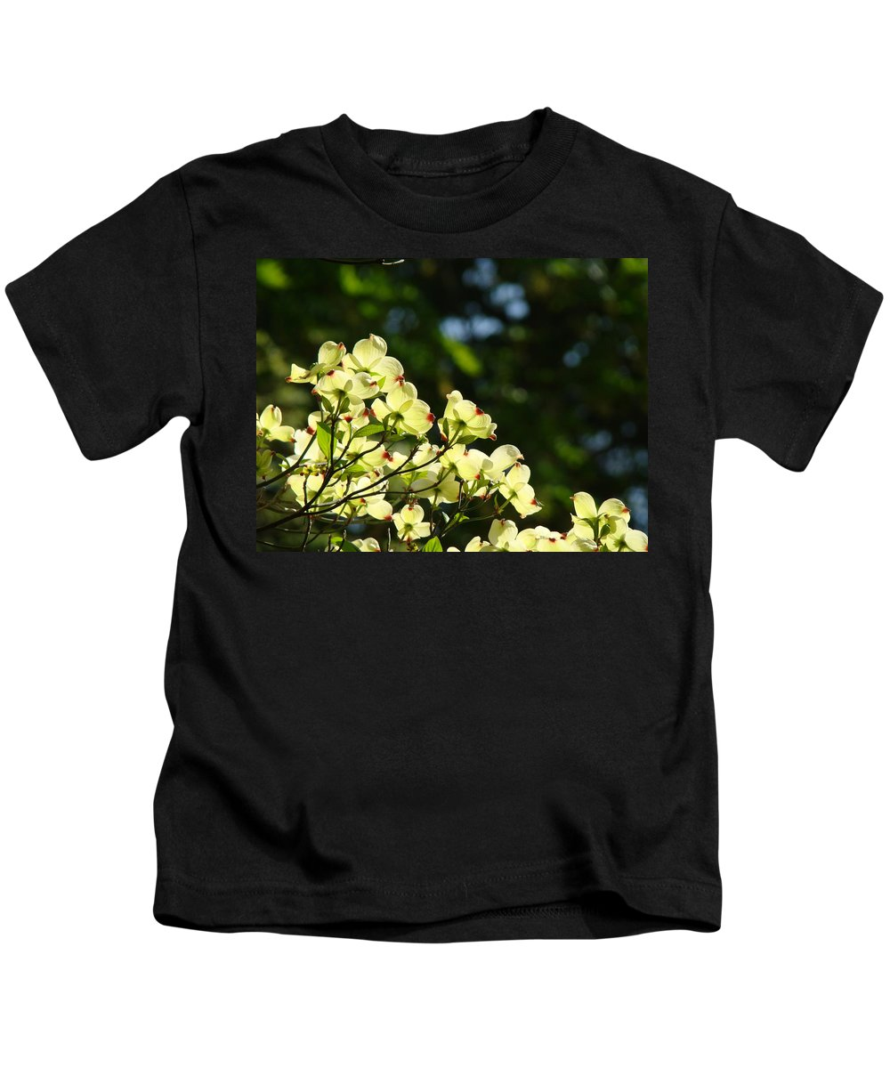 Dogwood Kids T-Shirt featuring the photograph Dogwood Flowers White Dogwood Tree Flowers Art Prints Cards Baslee Troutman by Baslee Troutman