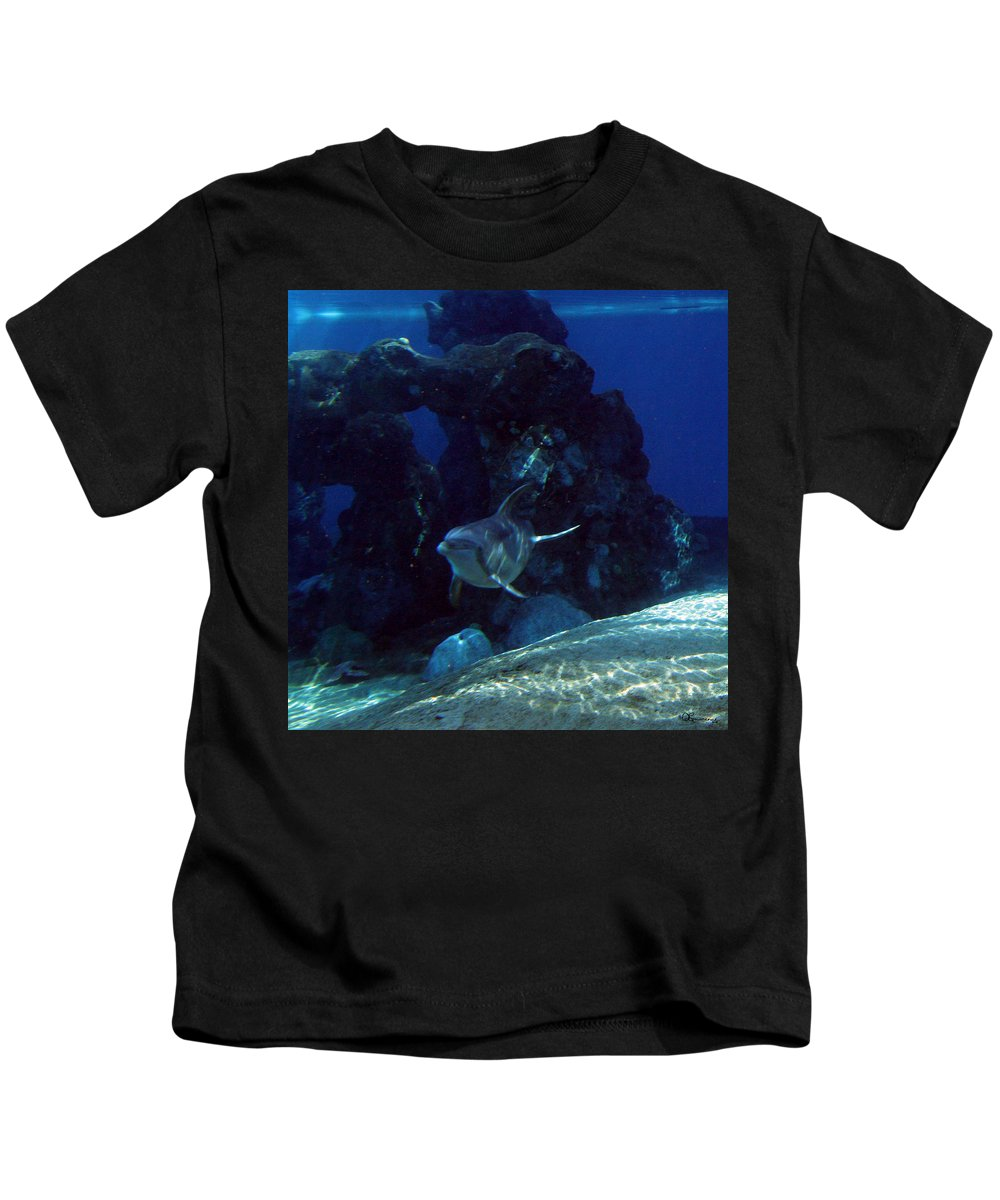 Dolphin Fish Aquatic Life Water Aquarium Sea Sandy Shore Rock Reef Kids T-Shirt featuring the photograph Dolphin by Andrea Lawrence