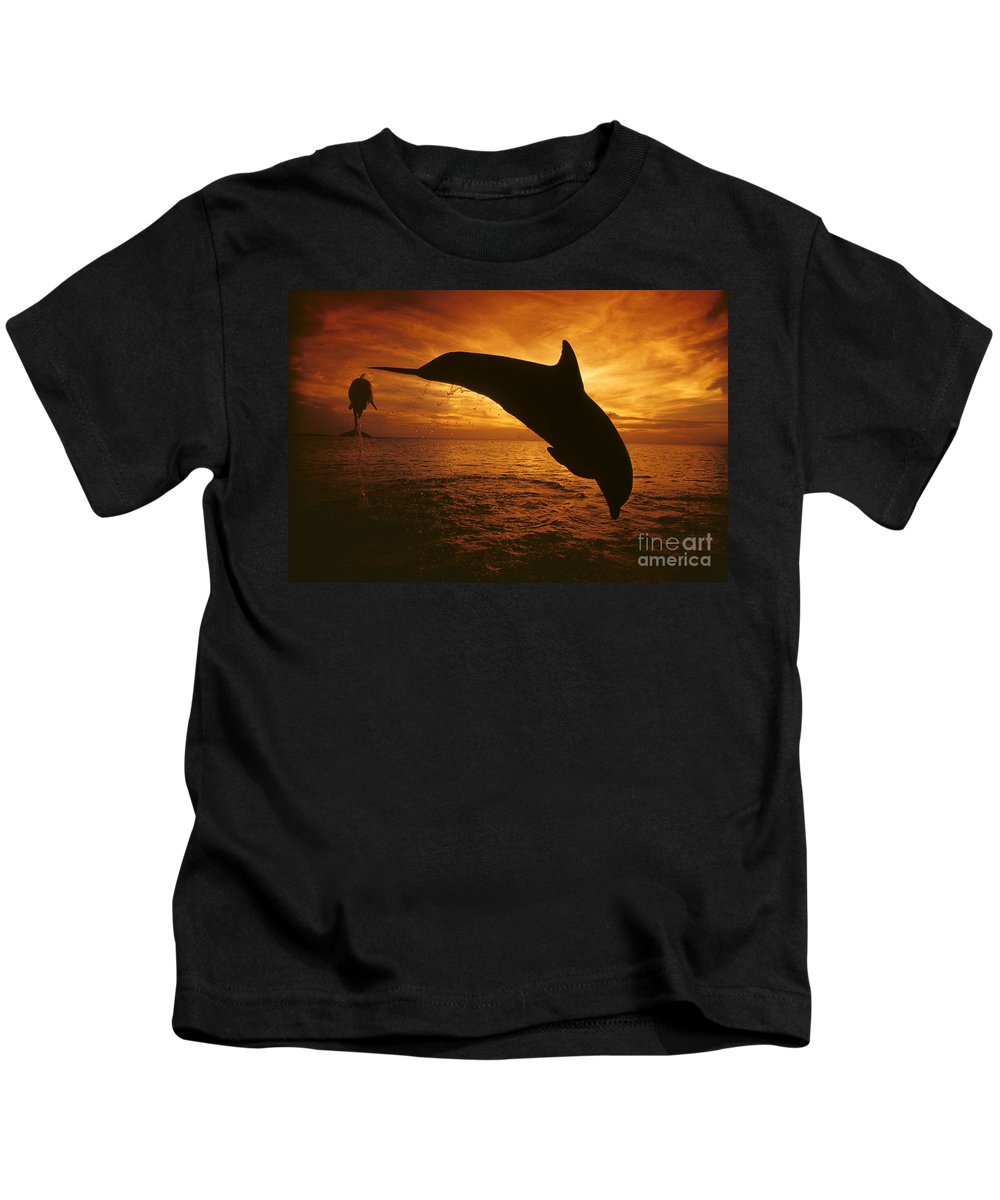 Amaze Kids T-Shirt featuring the photograph Dolphins And Sunset by Dave Fleetham - Printscapes
