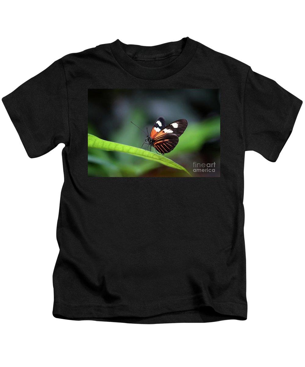 Nature Kids T-Shirt featuring the photograph Doris Longwing Butterfly 2017 by Karen Adams