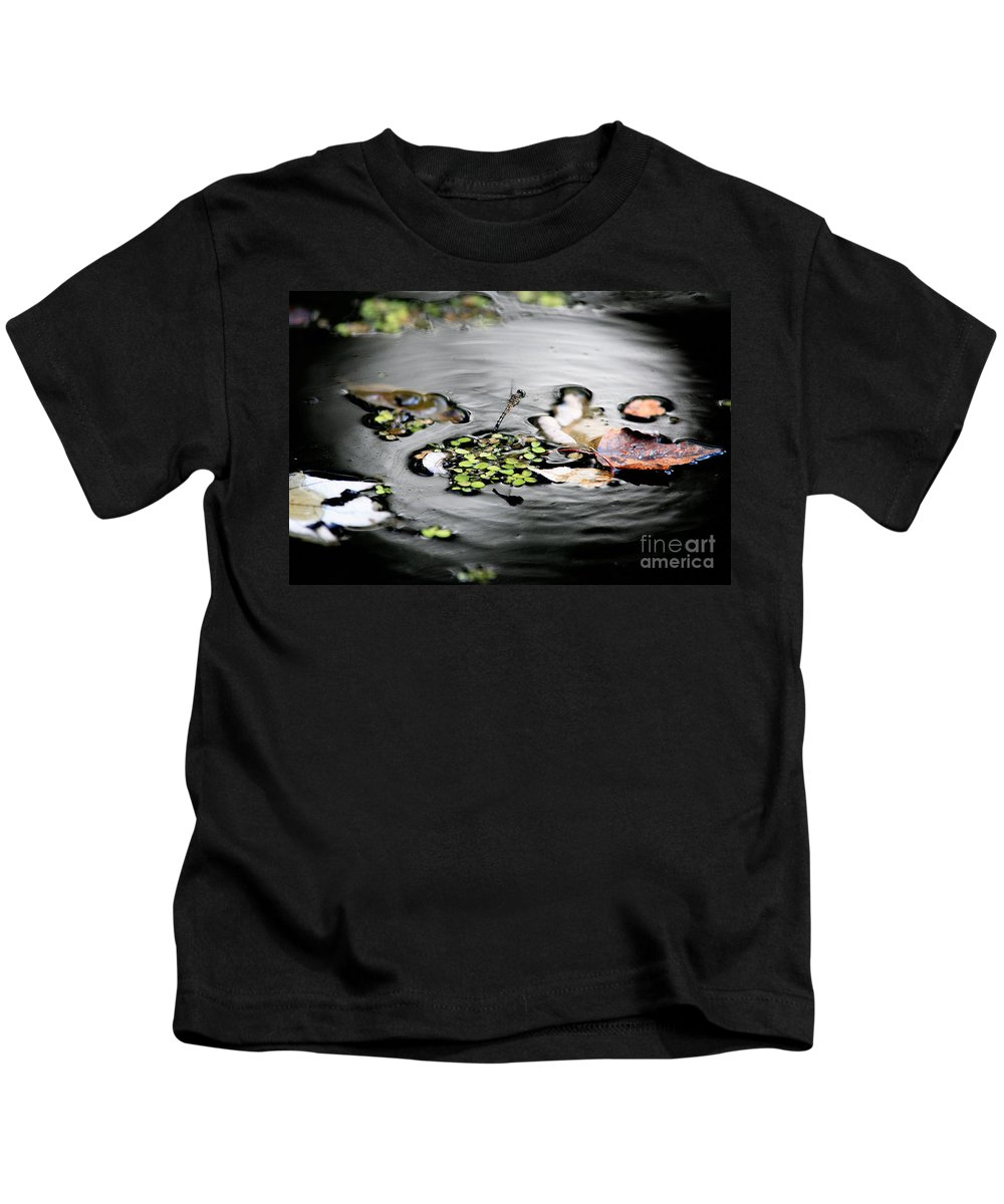 Dragonfly Kids T-Shirt featuring the photograph Dragonfly Above Leaves by Matt Suess