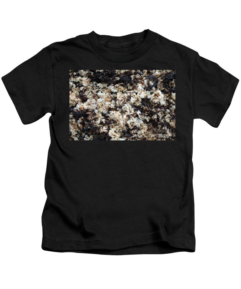 Seaweed Kids T-Shirt featuring the photograph Dried Irish Moss by Ted Kinsman