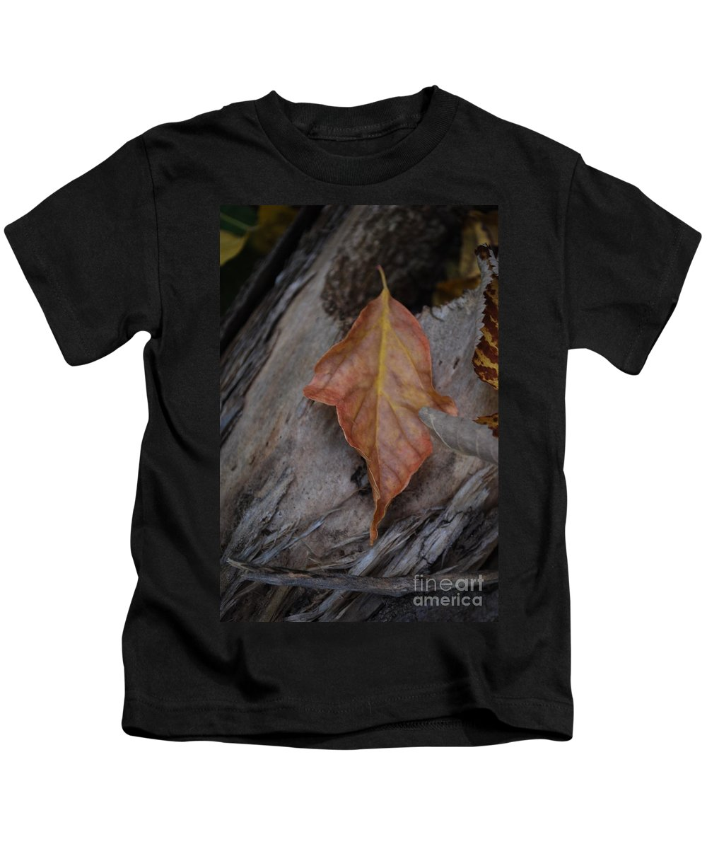 Fall Kids T-Shirt featuring the photograph Dried Leaf On Log by Heather Kirk