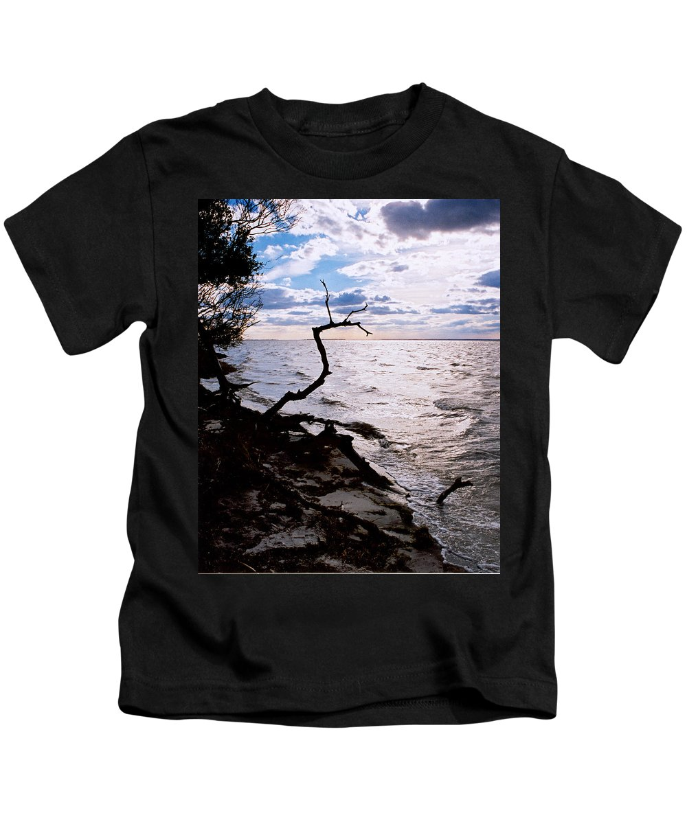 Barnegat Kids T-Shirt featuring the photograph Driftwood Dragon-barnegat Bay by Steve Karol