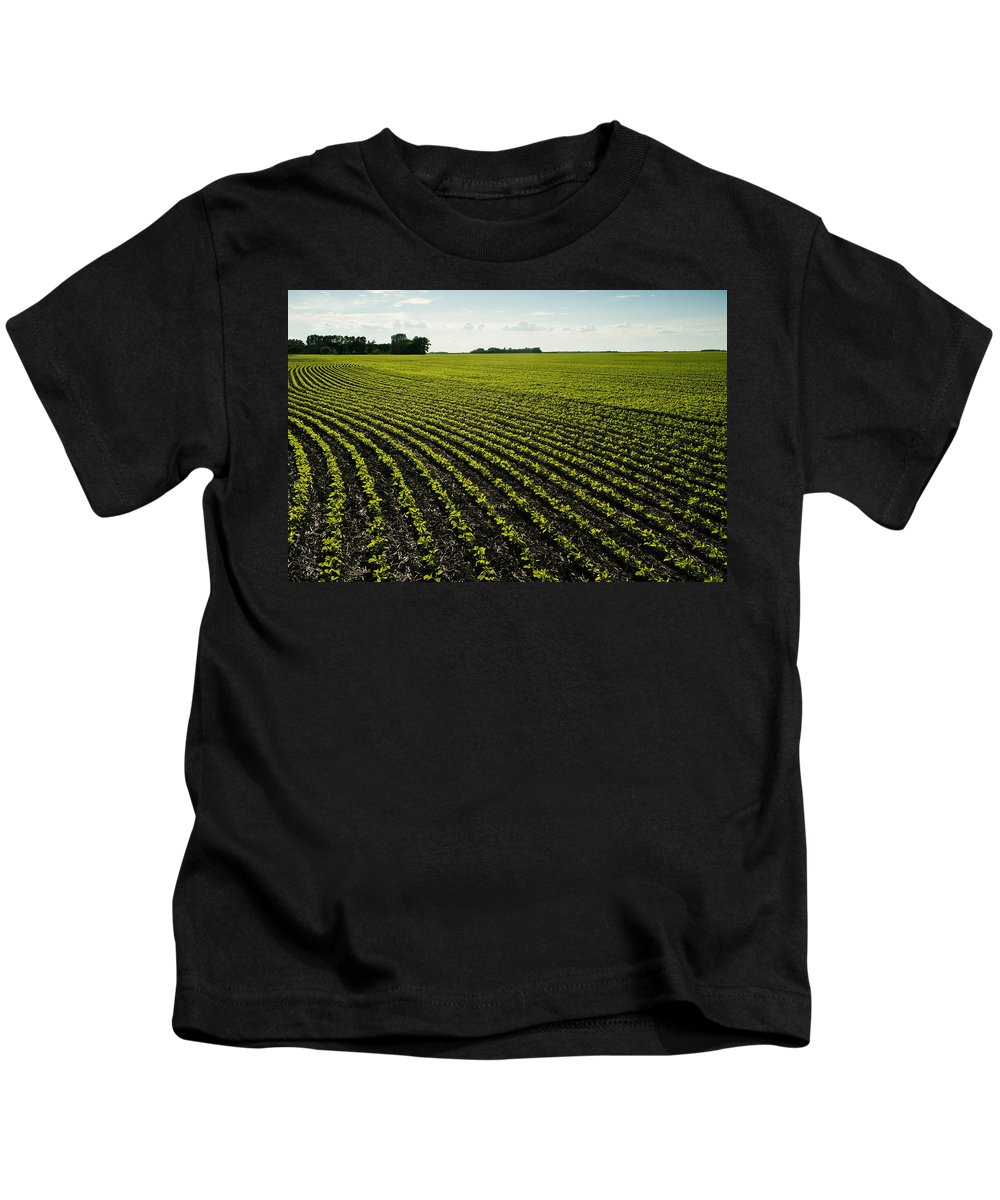 Agribusinesses Kids T-Shirt featuring the photograph Early Growth Soybean Field by Dave Reede