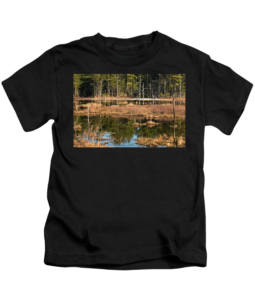 white Mountains Kids T-Shirt featuring the photograph Early Spring Marsh by Paul Mangold