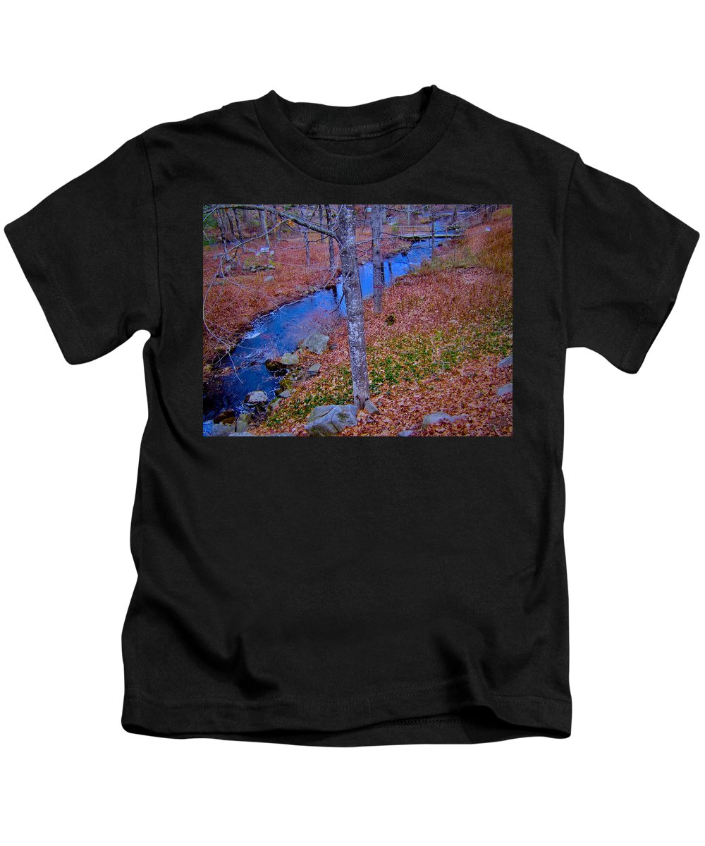 Creek Kids T-Shirt featuring the photograph Early Winter by Elizabeth Tillar