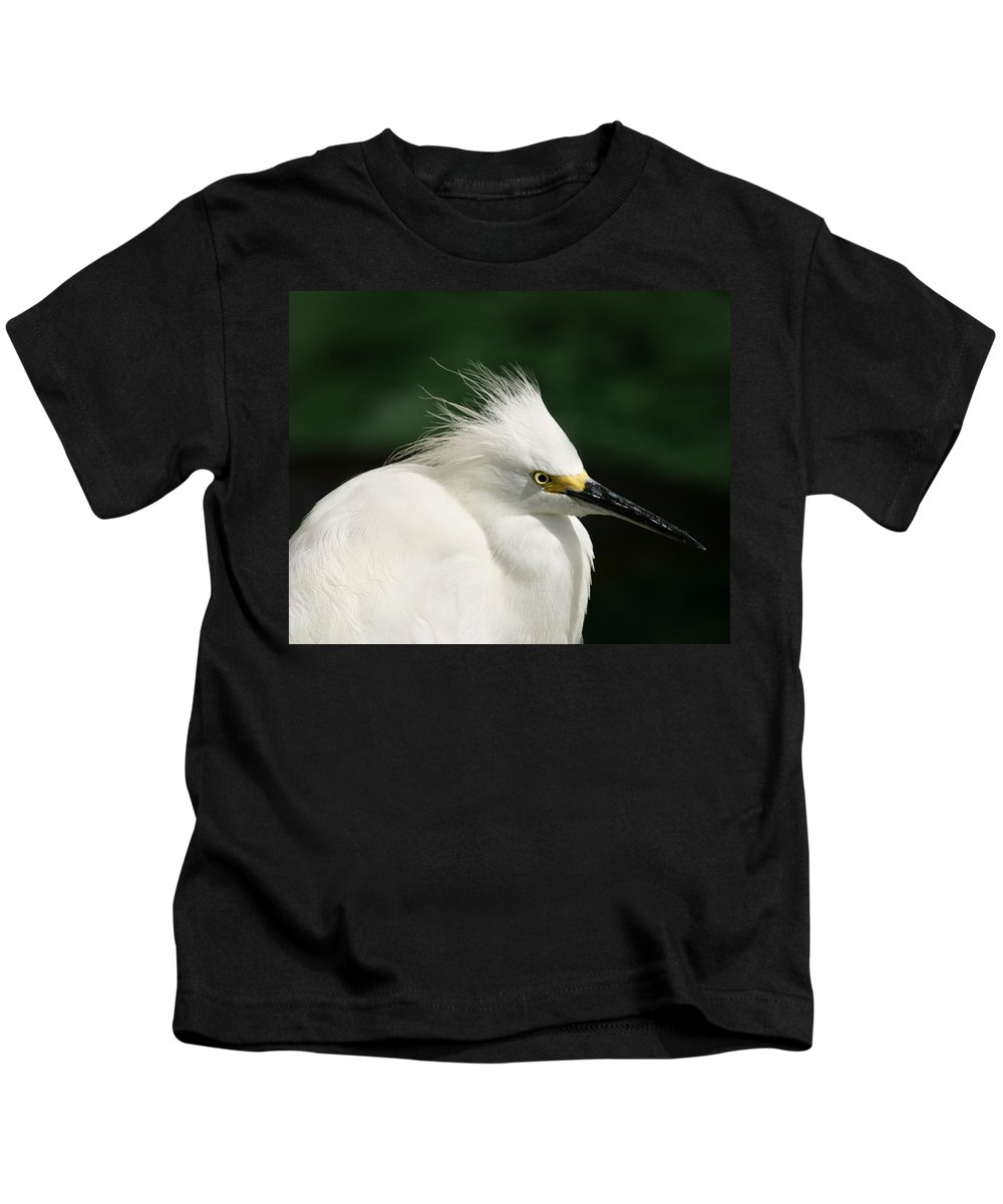 Egret Kids T-Shirt featuring the photograph Egret by Anthony Jones