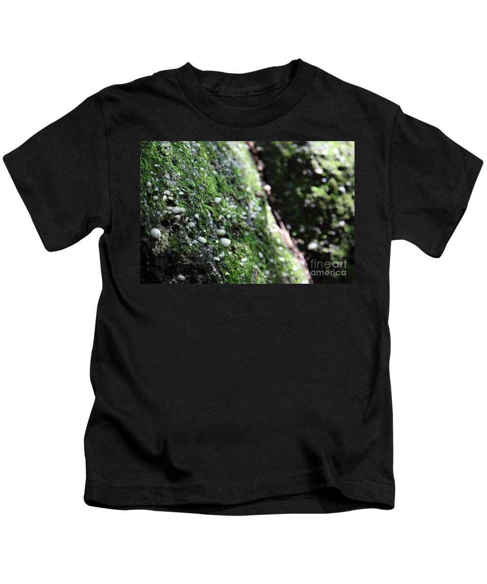 Rocks Kids T-Shirt featuring the photograph Embedded by Amanda Barcon