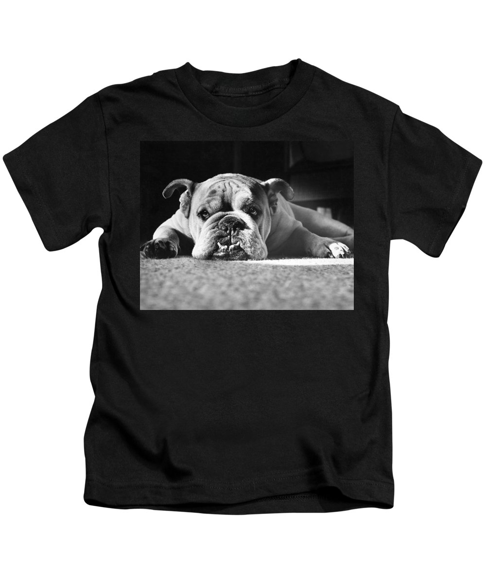 Animal Kids T-Shirt featuring the photograph English Bulldog by M E Browning and Photo Researchers