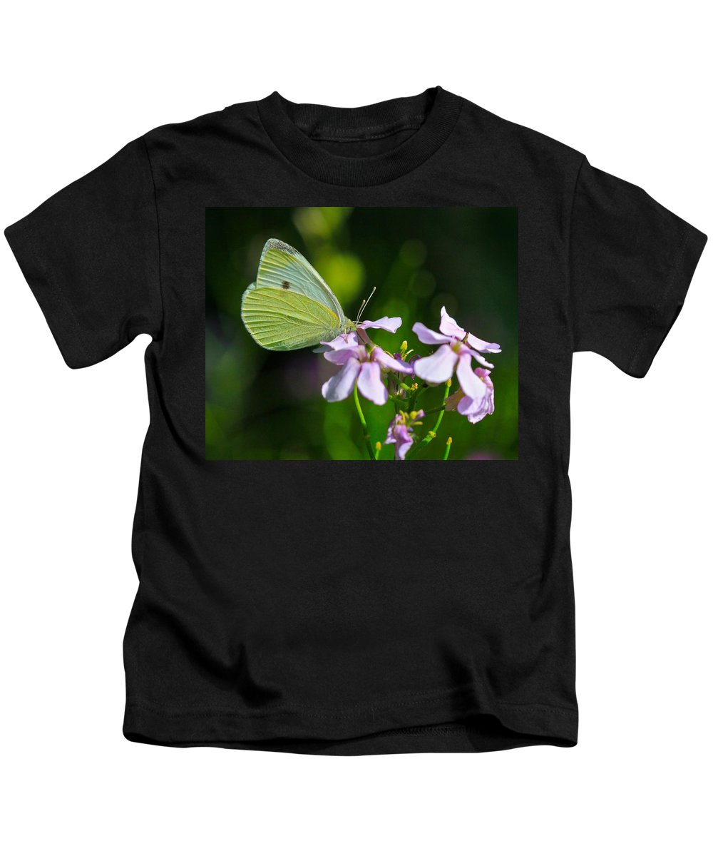 Related Tags: Butterfly Artwork Kids T-Shirt featuring the photograph Face First by Robert Pearson