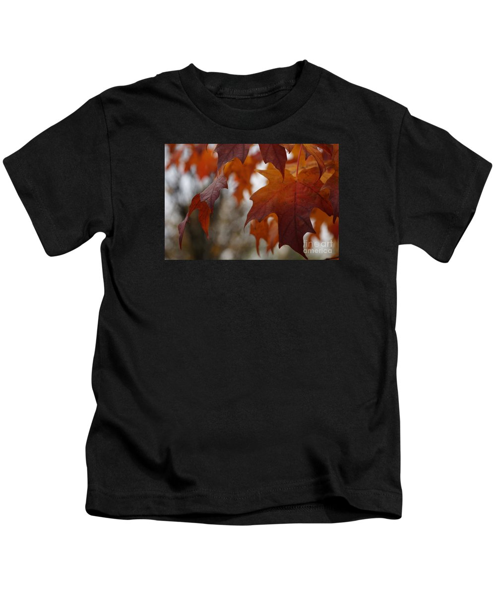 Autumn Kids T-Shirt featuring the photograph Fall by Linda Shafer