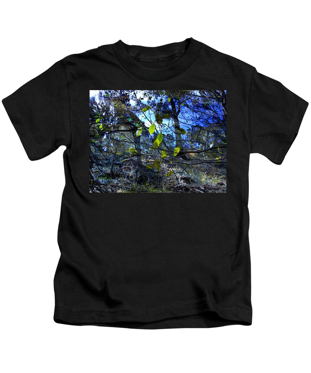 Leaves Kids T-Shirt featuring the photograph Falling Leaves by Kelly Jade King