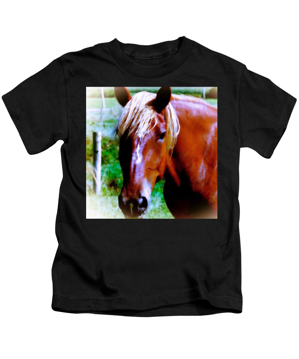 Maggievlazny Kids T-Shirt featuring the photograph Horse Portrait by Femina Photo Art By Maggie