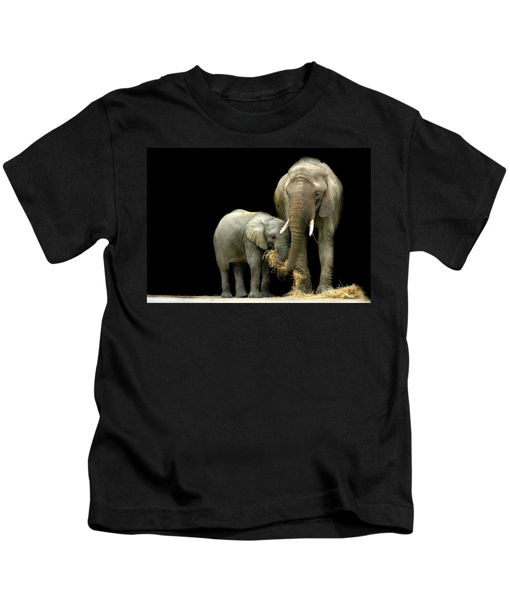 Elephant Kids T-Shirt featuring the photograph Feeding Time by Stephie Butler