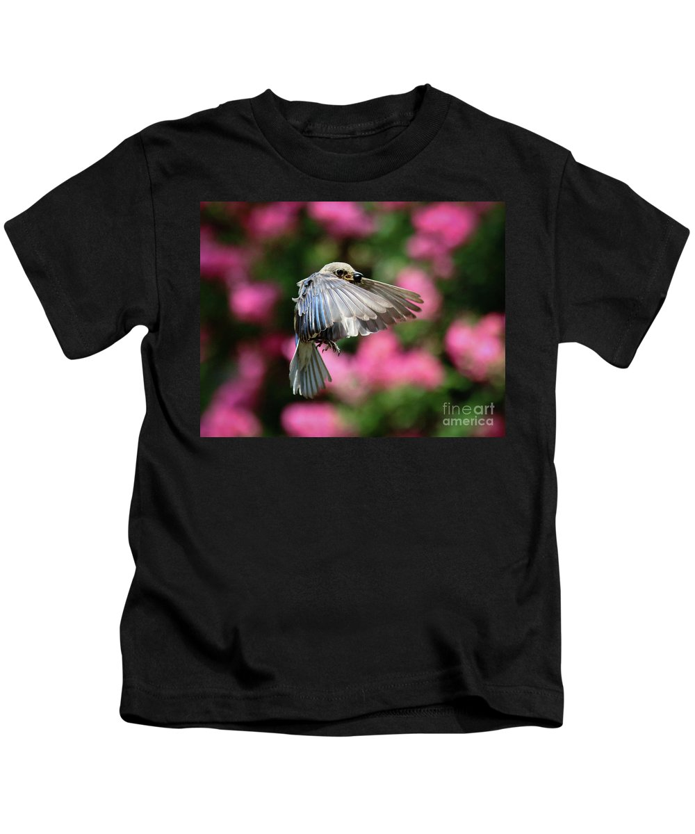 Berry Kids T-Shirt featuring the photograph Female Bluebird In Flight by Douglas Stucky
