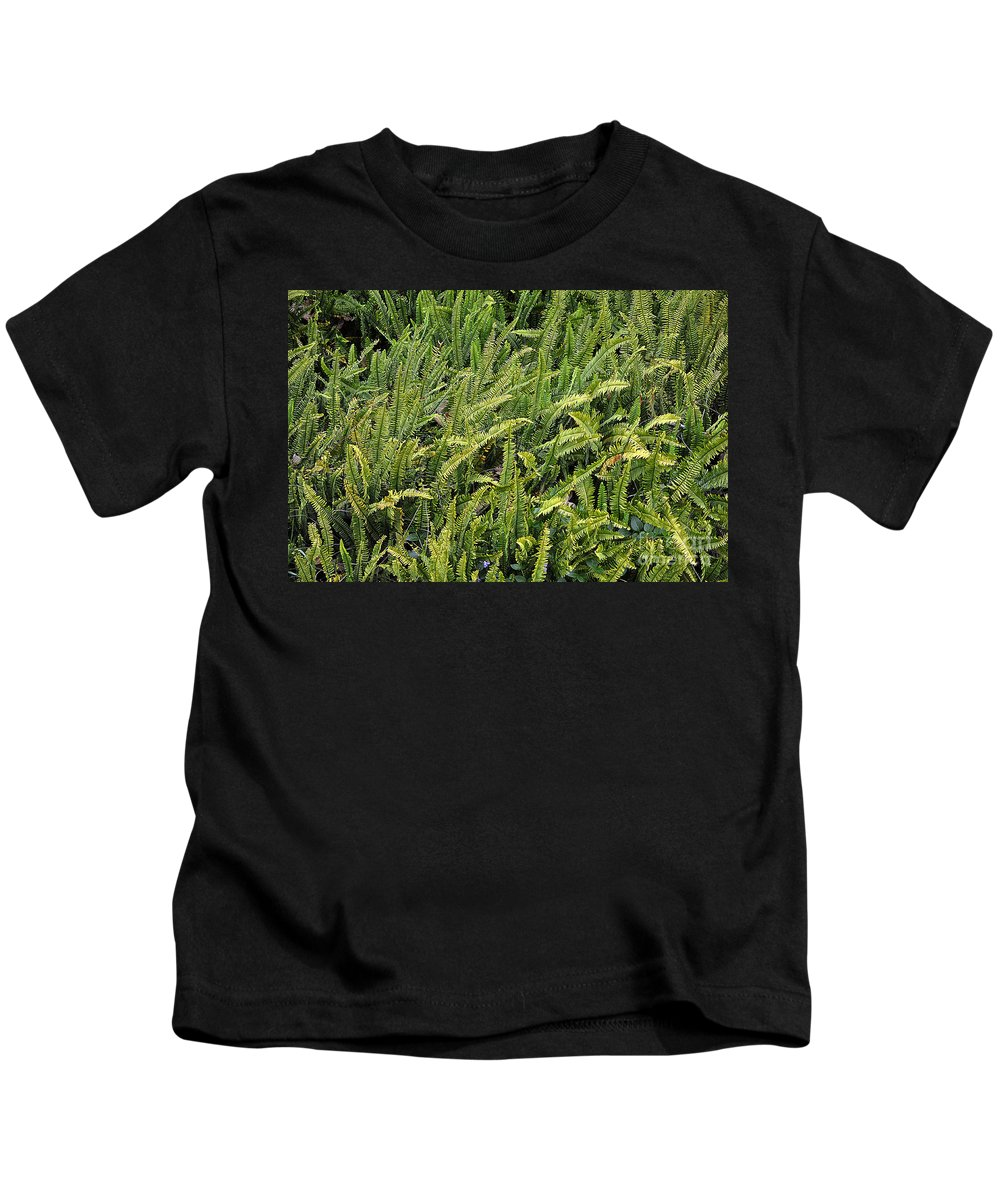 Clay Kids T-Shirt featuring the photograph Fern by Clayton Bruster