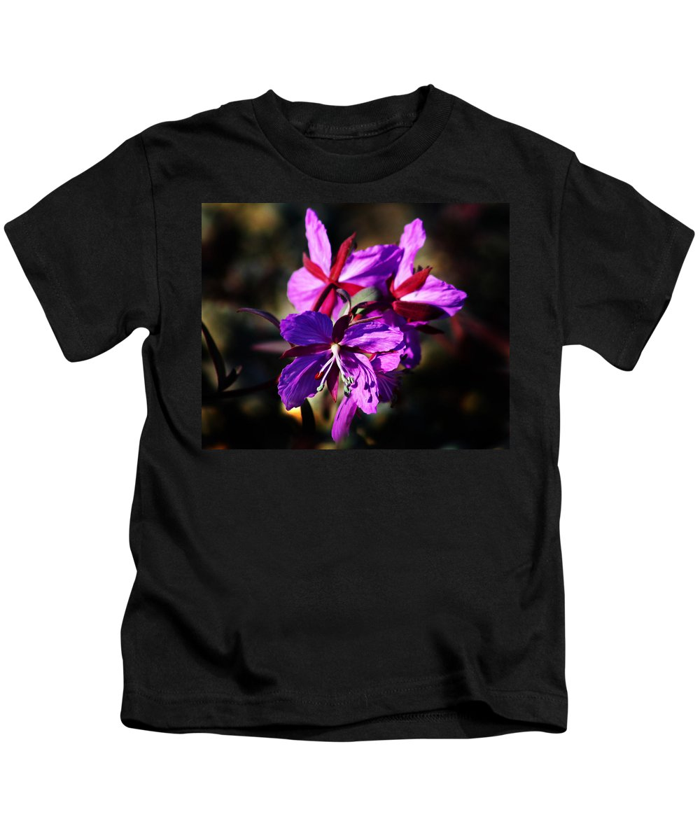 Fireweed Kids T-Shirt featuring the photograph Fireweed by Anthony Jones