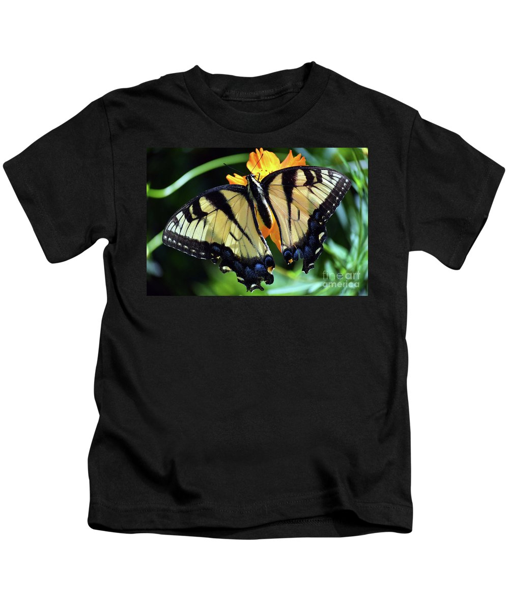 Fish Eye Butterfly Kids T-Shirt featuring the photograph Fish Eye Butterfly by Patti Whitten