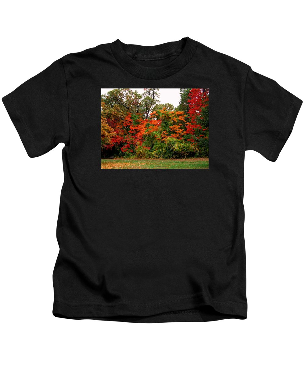 Wildwood Park Kids T-Shirt featuring the photograph Flamboyant Forest by Michiale Schneider
