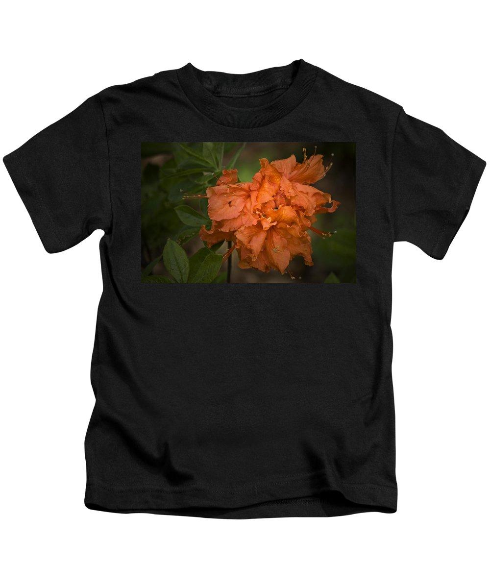 Flame Kids T-Shirt featuring the photograph Flame Azalea by Teresa Mucha