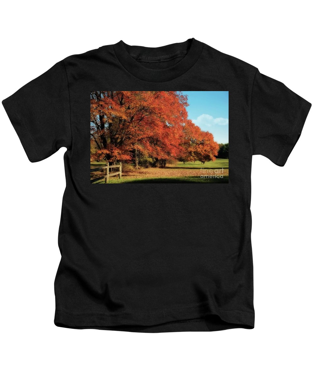 Autumn Kids T-Shirt featuring the photograph Flame Trees by Lois Bryan
