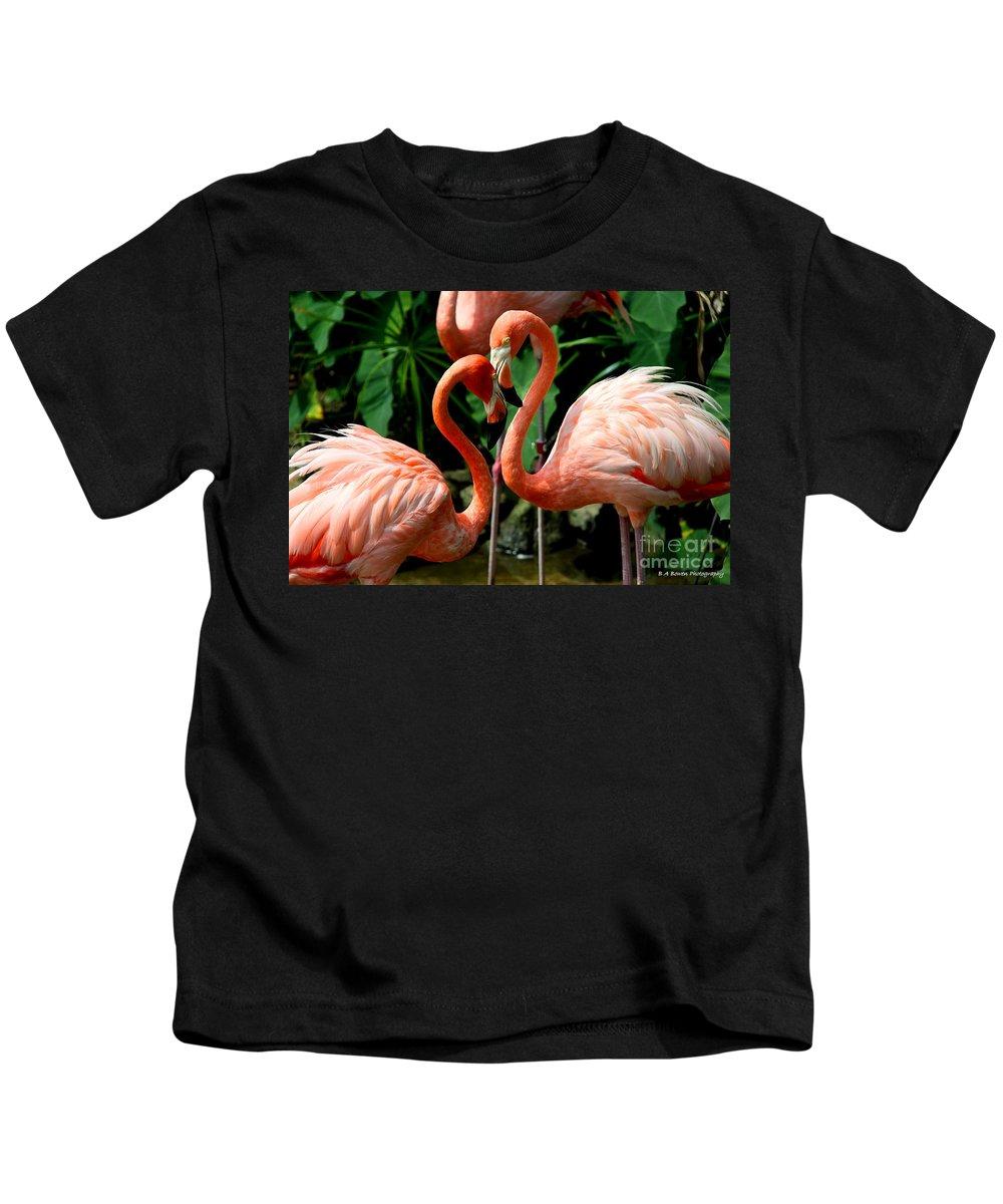 Pink Flamingo Kids T-Shirt featuring the photograph Flamingo Heart by Barbara Bowen