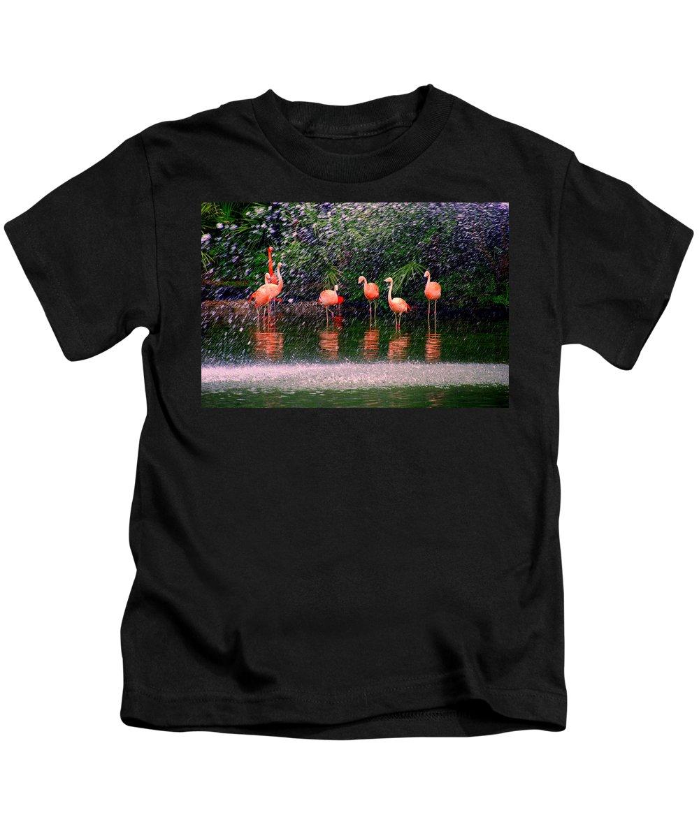 Flamingos Kids T-Shirt featuring the photograph Flamingos II by Susanne Van Hulst