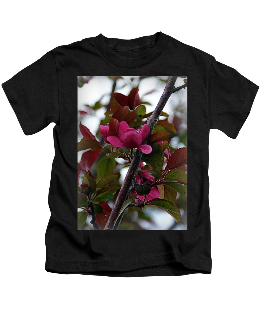 Flowers Kids T-Shirt featuring the photograph Flowering Crabapple by Cricket Hackmann