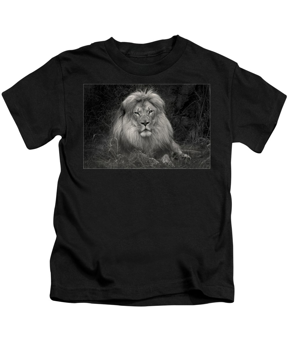 We Are Guardians Of... Kids T-Shirt featuring the photograph Fluffball by Laura Macky