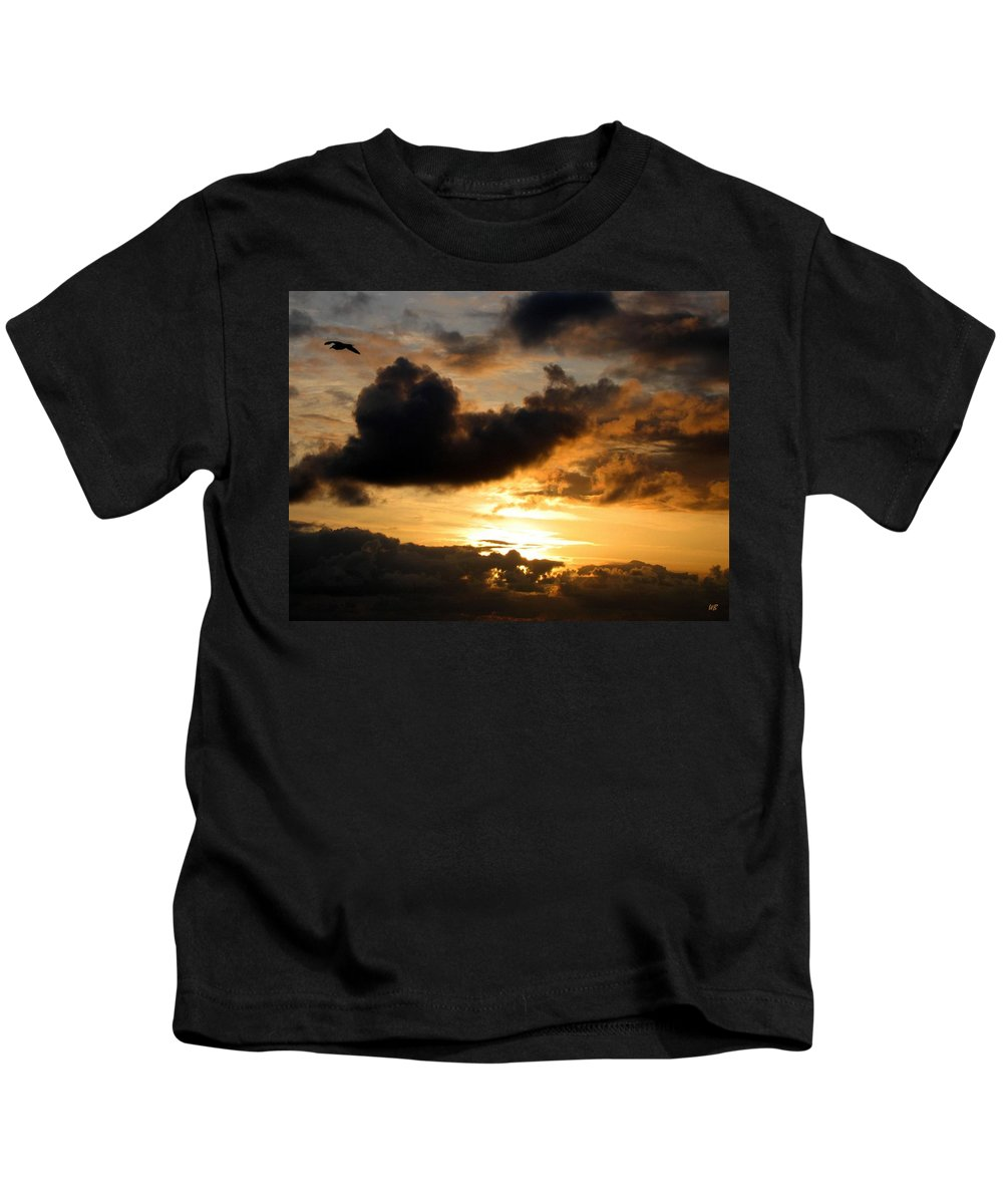 Seagull Kids T-Shirt featuring the photograph Flying Solo by Will Borden