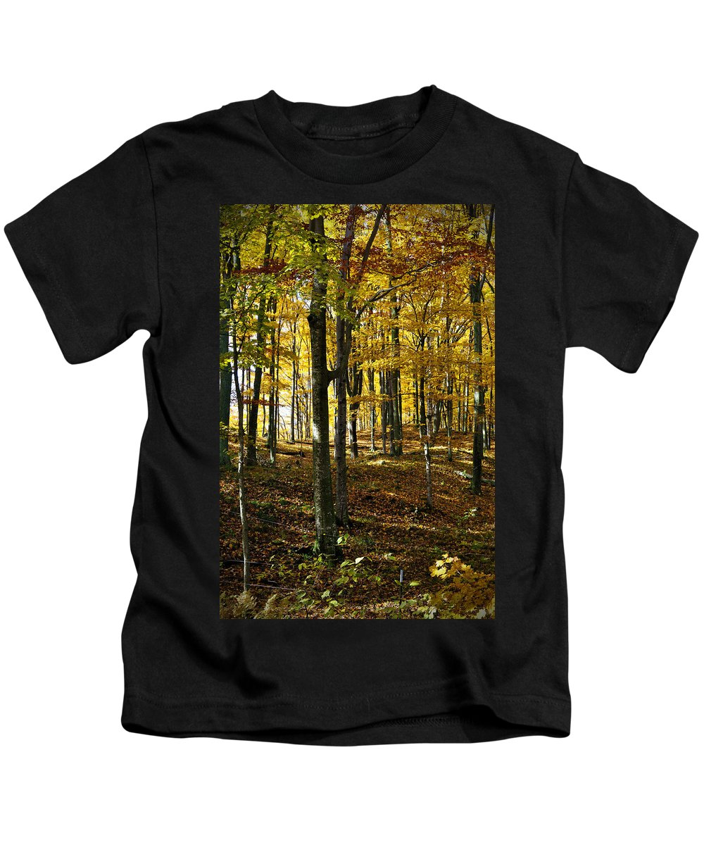 Trees Kids T-Shirt featuring the photograph Forest Floor One by Tim Nyberg