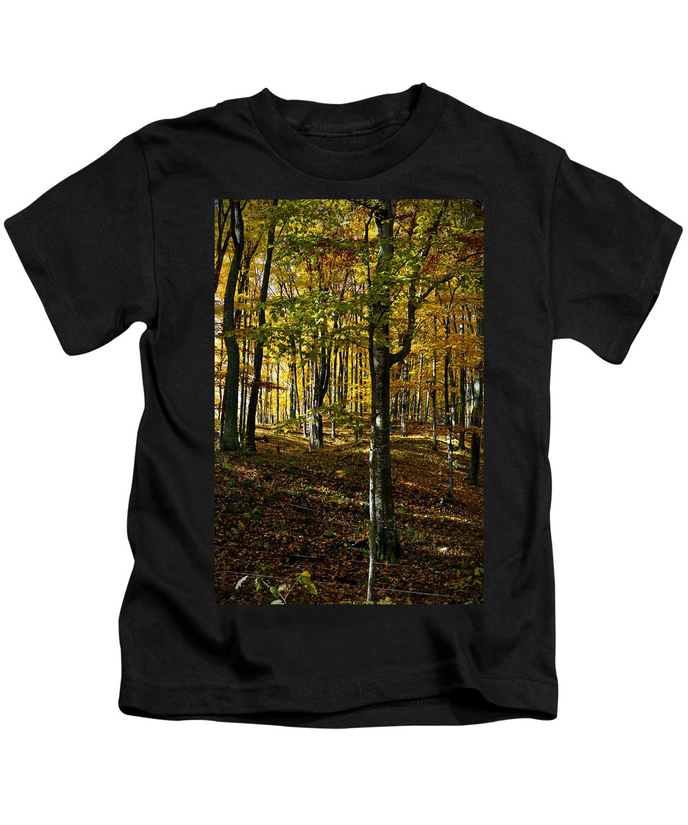 Trees Kids T-Shirt featuring the photograph Forest Floor Two by Tim Nyberg