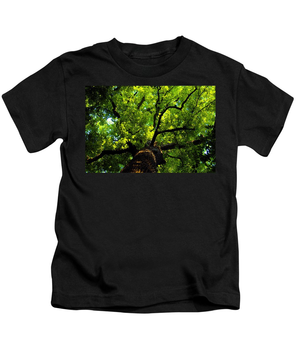 Forest Kids T-Shirt featuring the painting Forest top by David Lee Thompson