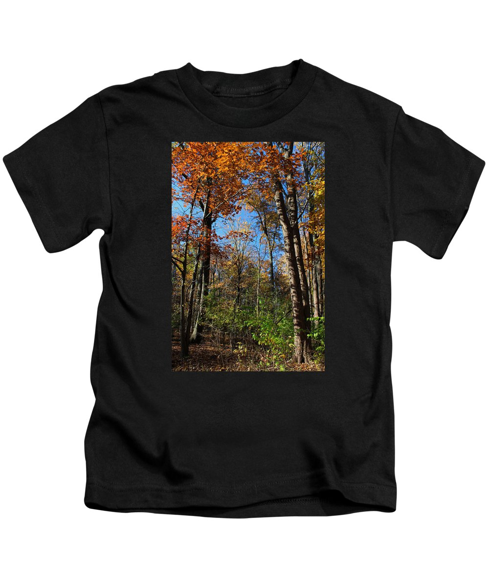 Tree Kids T-Shirt featuring the photograph Forest Veteran by Michiale Schneider