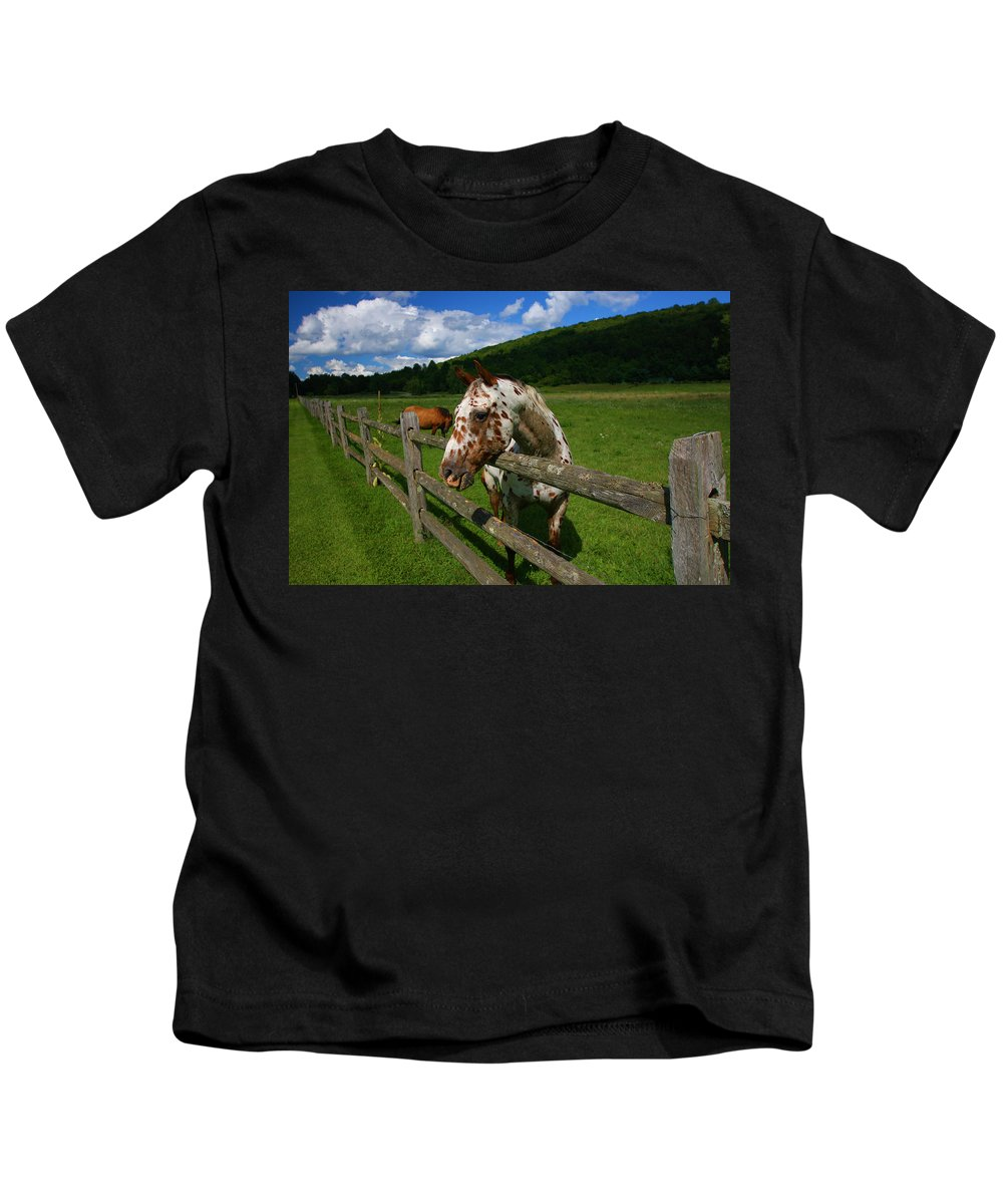 Horse Kids T-Shirt featuring the photograph Freckles by Karol Livote
