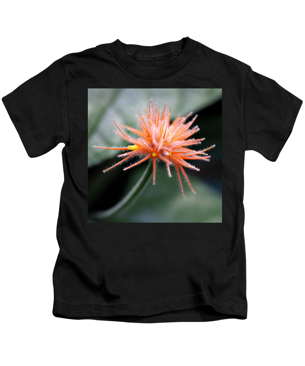 Flower Orange Fair Child Gardens Miami Tropical Photography Kids T-Shirt featuring the photograph Fuzzy Orange by Norah Holsten