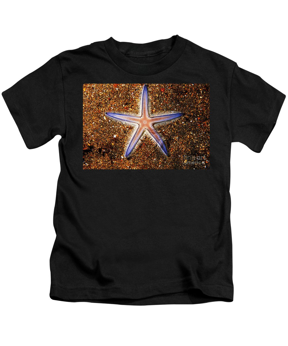 Animal Art Kids T-Shirt featuring the photograph Galapagos Colorful Seastar by Ed Robinson - Printscapes