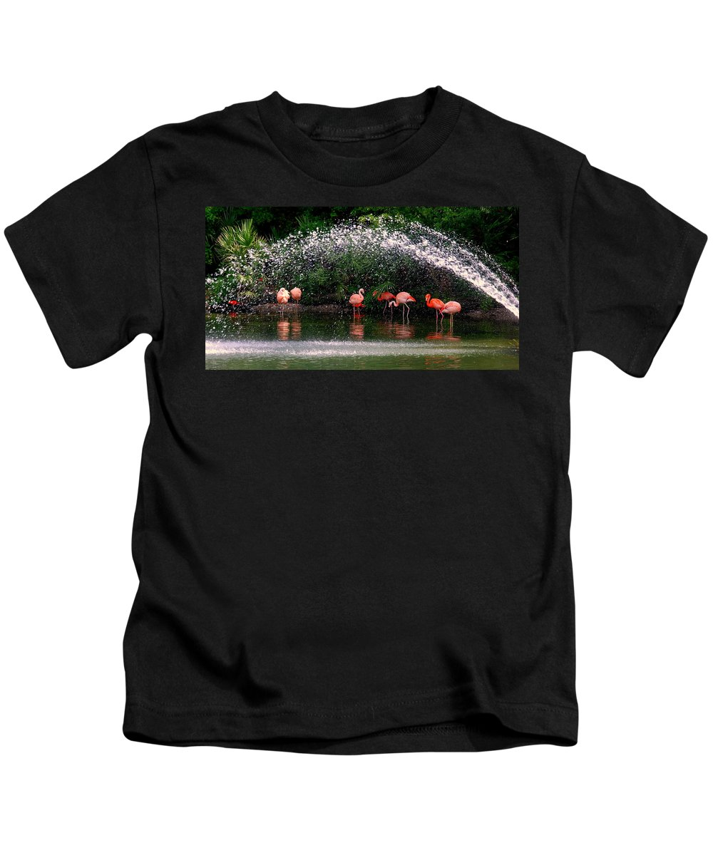 Flamingo Kids T-Shirt featuring the photograph Gathering Together by Susanne Van Hulst