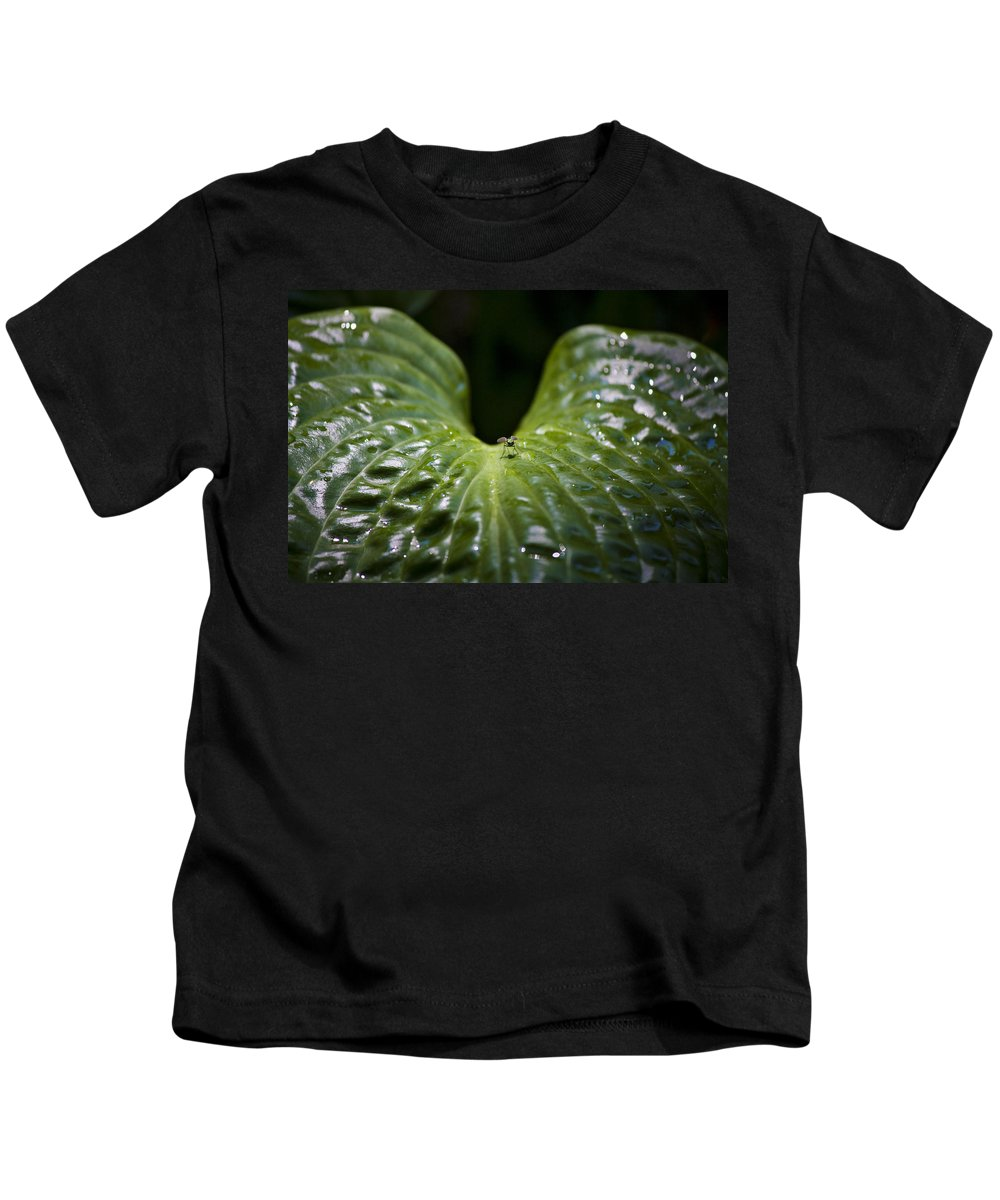Hosta Kids T-Shirt featuring the photograph Getting A Drink by Teresa Mucha